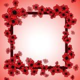 Hintergrund und Blumenrahmen mit Mohnblumen Lizenzfreies Stockbild