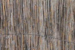 Hintergrund von alte zerschlagene Schilfe, gebundener oben Draht Stockfotos