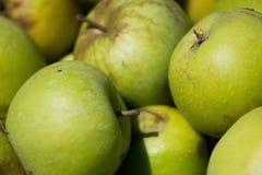 Hintergrund von den Äpfeln Makro Lizenzfreie Stockfotos