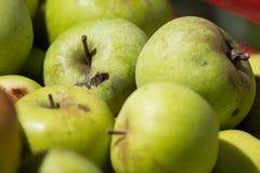 Hintergrund von den Äpfeln Makro Stockbilder