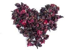 Hintergrund von den Blumen der Roselle Kelche Stockbild