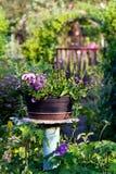Hintergrund von den Blumen, die in einem Garten blühen stockfoto
