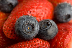 Hintergrund von den Erdbeeren und von der Blaubeere stockbilder