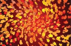Hintergrund von den Herbstblättern Lizenzfreie Stockfotos