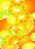 Hintergrund von der Frucht Lizenzfreie Stockbilder
