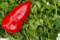 Hintergrund von der Petersilie und vom roten Pfeffer mit Tropfen Lizenzfreie Stockfotografie