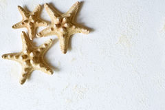 Hintergrund von drei Starfishes in der Ecke Stockbild