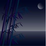 Hintergrund von einem Bambus Stockfoto