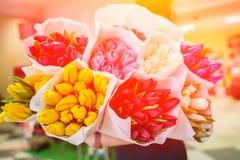 Hintergrund von einem Blumenstrauß von Blumentulpen lizenzfreie stockfotos