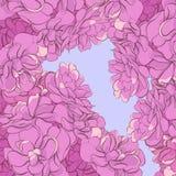 Hintergrund von empfindlichen rosa Blumen Lizenzfreie Stockfotografie