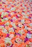 Hintergrund von farbigen Rosen Lizenzfreie Stockfotos