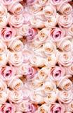Hintergrund von frischen rosa romantischen Rosen Lizenzfreies Stockfoto