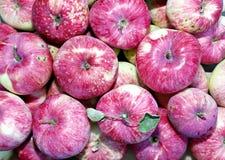 Hintergrund von großen roten reifen Äpfeln Stockfoto