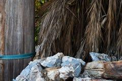 Hintergrund von großen Steinen mit Palmblättern 4K stockfoto
