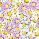 Hintergrund von mehrfarbigen Gänseblümchen Lizenzfreies Stockbild