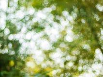 Hintergrund von natürliches Licht bokeh Lizenzfreie Stockbilder