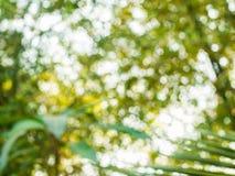 Hintergrund von natürliches Licht bokeh Lizenzfreies Stockbild