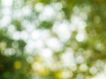 Hintergrund von natürliches Licht bokeh Lizenzfreie Stockfotos