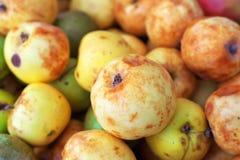 Hintergrund von reifen etwas verdorbenen bunten Äpfeln Lizenzfreie Stockfotografie