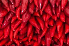 Hintergrund von roten Anaheim-Pfeffern stockfotos
