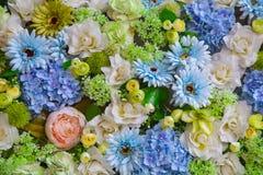 Hintergrund von schönen Blumen Lizenzfreie Stockfotografie