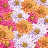 Hintergrund von schönen Blumen Lizenzfreie Stockfotos