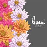 Hintergrund von schönen hellen Chrysanthemen Stockfotos