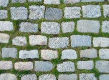 Hintergrund von Steinen und von Gras Lizenzfreies Stockbild