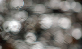 Hintergrund weißer Lichter Bokeh Stockbild