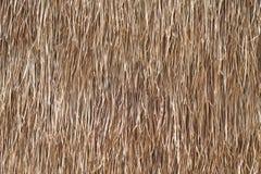 Hintergrund wird von getrocknetem Gras gebildet. Lizenzfreie Stockfotos