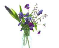 Hintergrundbeleuchtete purpurrote Blume Lizenzfreies Stockbild