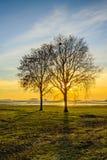 Hintergrundbeleuchtetes Bild der Sonneneinstellung hinter bloßen Bäumen Lizenzfreie Stockfotografie