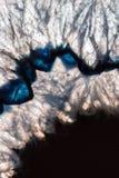 Hintergrundbeleuchtetes Mineral Stockfoto