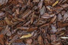 Hintergrundbeschaffenheit der Barke oder des Splitters mit Stückchen Naturholz lizenzfreies stockbild