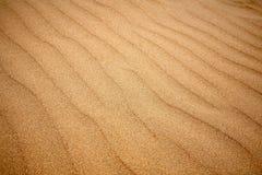 Hintergrundbeschaffenheit der Sanddüne Lizenzfreie Stockfotografie
