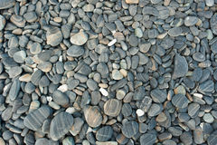 Hintergrundbeschaffenheit der Steinwand Stockbilder