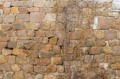 Hintergrundbeschaffenheit der Steinwand Stockfotos
