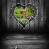 Hintergrundherzfensterholzverkleidungs-Blumentulpen grau Stockfoto
