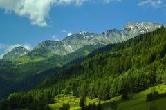 Hintergrundlandschaftsansicht der schneebedeckten Spitzen der Alpen und des Koniferenwaldes im Tirol Stockbild
