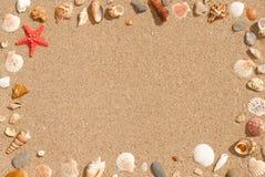 Hintergrundrahmen von Muscheln auf Sand Stockfotografie