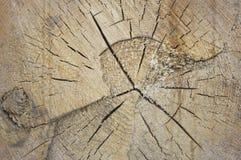 Hintergrundstruktur des Holzes mit Sprüngen Lizenzfreie Stockbilder