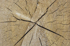 Hintergrundstruktur des Holzes mit Sprüngen Stockfotos