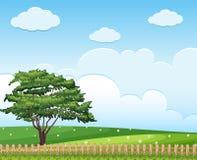 Hintergrundszene mit Baum auf dem Gebiet Stockfotos