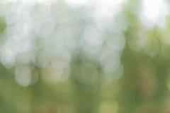 Hintergrundunschärfe der Natur Lizenzfreie Stockfotos