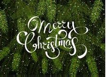Hintergrundvektorschablone der frohen Weihnachten mit grünen Tannenbaumasten lizenzfreie stockfotografie