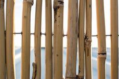 Hintergrundwand von Bambusstöcken Stockbild