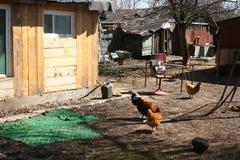 Hinterhof, verfallenes russisches Dorf lizenzfreie stockfotos