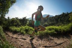 Hinterläufer, der in Morgenwald läuft Stockbilder