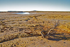 Hinterland Australien Stockbild