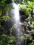 Hinterland Falls. Taken at Springbrook Mountain in the Gold Coast Hinterland, QLD, Australia Royalty Free Stock Image